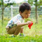 子どもの時の遊びが大切、その根拠はコレ!